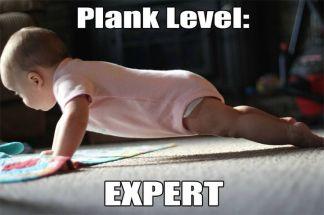 plank .jpg
